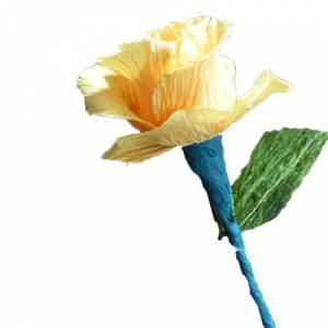 Prácticos mujer - Flor Bombón - Tamaño Pequeña - Colores surtidos